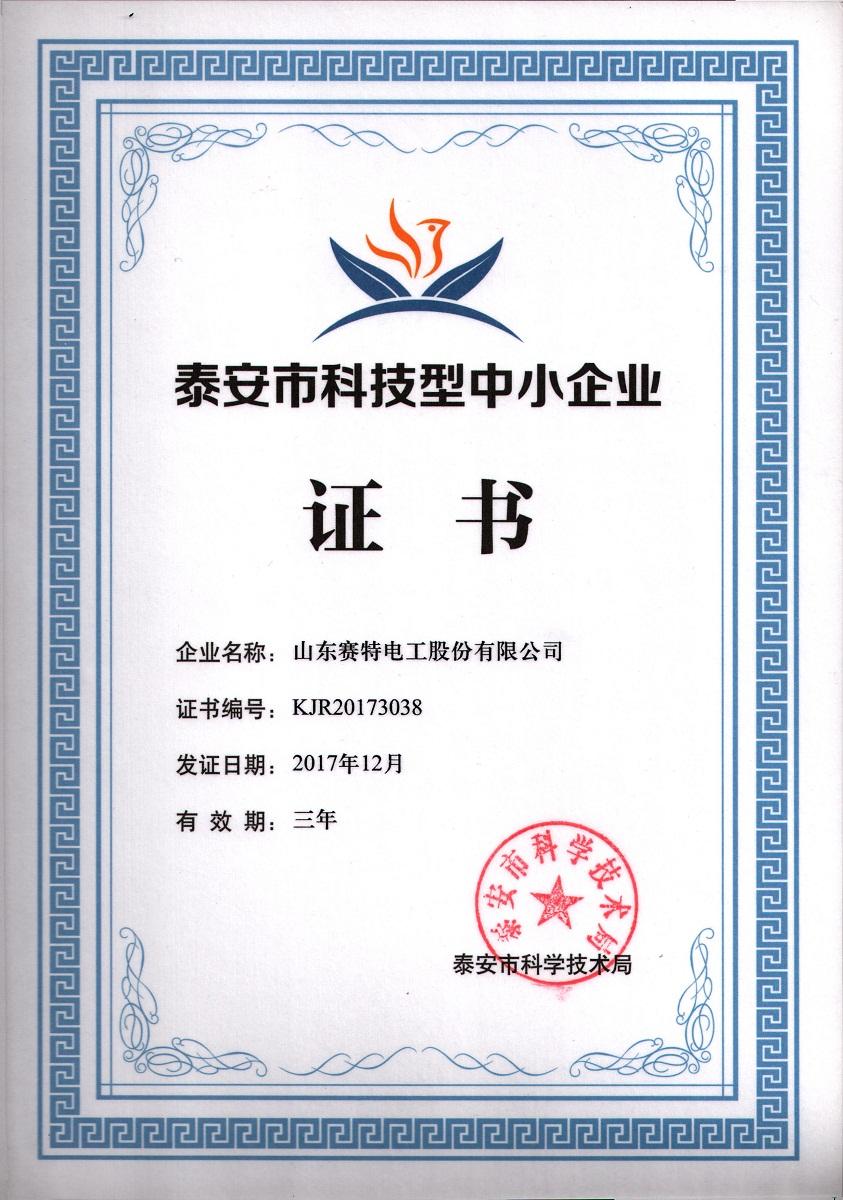 泰安市中小企业证书